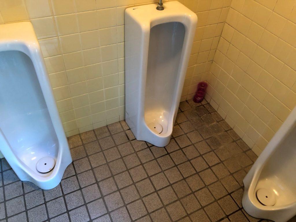 男性トイレ 虫もいなくてきれい