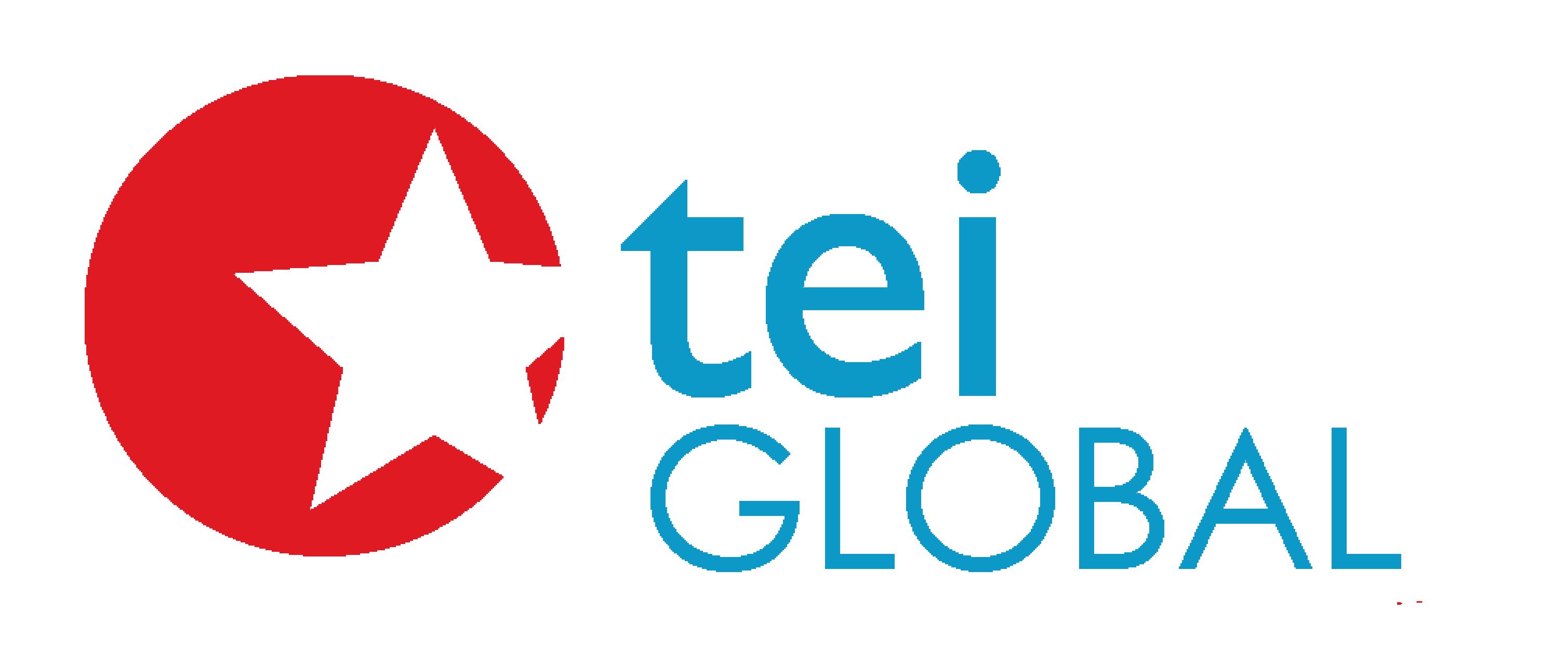 ティーイーアイグローバル株式会社